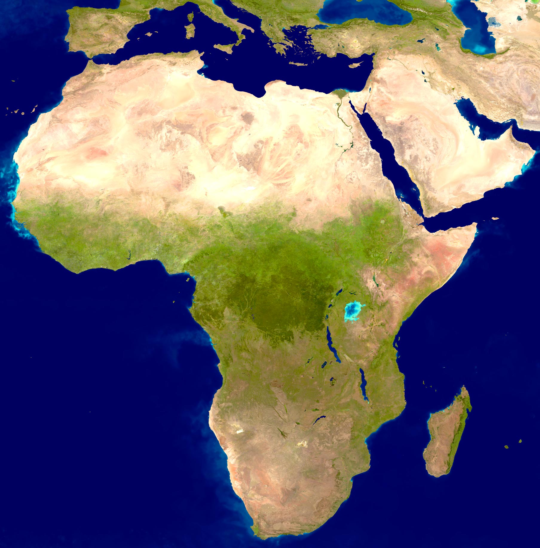 Africa Image Sahara Desert And Forests - Africa desert map